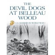 The Devil Dogs at Belleau Wood: U.S. Marines in World War I, Paperback