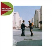 Video Delta Pink Floyd - Wish You Were Here (Remastered Discovery Edition) - CD