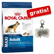 Royal Canin + Pandantiv Safety gratis! - Giant Adult, 15 kg