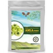 Saptraag Amla Powder 400 gm