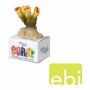 EBI AQUA DELLA CORAL MODULE S torch coral color 8,5x5,8x4cm