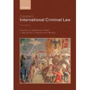 Cassese's International Criminal Law, Paperback