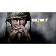 Call Of Duty World War 2 (Offline)