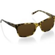 DKNY Rectangular Sunglasses(Brown)