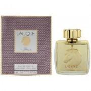 Lalique - pour homme equus eau de toilette - 75 ml spray