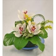 Aranjament cu orhidee si flori de sanziene
