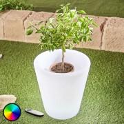 LED flowerpot light Leyra, RGB, remote control