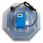Incubator Cleo 5DTH cu dispozitiv intoarcere si termometru