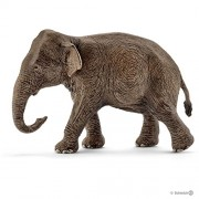 Schleich Asian Elephant Female, Multi Color