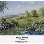 Peisaj de vara (kit goblen)