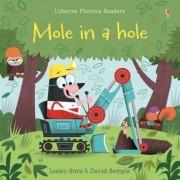 Mole In A Hole, carte Usborne limba engleza