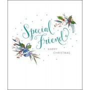 grote kerstkaart woodmansterne - special friend happy christmas
