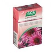 Bomboane cu Echinacea Bio Pronat 30gr