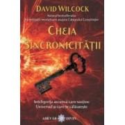 Cheia Sincronicitatii - David Wilcock