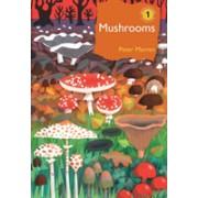 Mushrooms - The natural and human world of British fungi (Marren Peter)(Cartonat) (9781472971494)