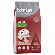 briantos Pack ahorro: pienso para perros - Adult Active (2 x 14 kg)