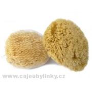 Mořská houba žlutá pacifická > varianta 11-12