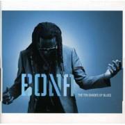 Richard Bona - Ten Shadesof Blues (0600753202258) (1 CD)