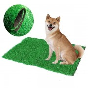 Dog Cat Toilet Mat Indoor Potty Trainer Artificial Grass Turf Patch Pad