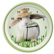 Geen Wandklok konijn groen 25 cm - Action products