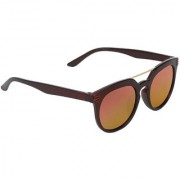 Zyaden Brown Round Unisex Sunglasses 147