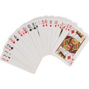 Premium Playing Cards (Pack of 2)