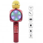 Microfon wireless pentru Karaoke WS-1816