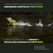 A Photographic Guide of the Common Amphibians & Reptiles of Costa Rica/ Guia Fotografica de Los Anfibios y Reptiles Mas Comunes de Costa Rica