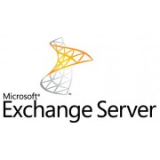 Microsoft Exchange Enterprise CAL Software Assurance Government OPEN 1 License No Level User CAL Without Services