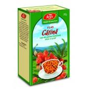 CeaiCatina Fructe, punga 50 grame