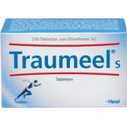 Biologische Heilmittel Heel GmbH TRAUMEEL S Tabletten 250 St