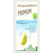 Primum Acquaretico