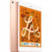 Apple iPad mini (2019) MUQY2 64GB WiFi with Tempered Glass Screen Protector - Gold (with 1 year official Apple Warranty)