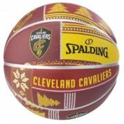 NBA Team Cleveland Cavaliers 7