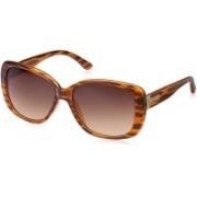 Fastrack Wayfarer Sunglasses(Brown)