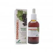 Soria Natural Composor 23 hyssopus complex 50ml - soria natural - extractos naturales líquidos