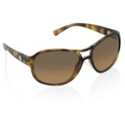 DKNY Over-sized Sunglasses(Multicolor)