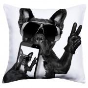 Perna Cool Dog 60x60