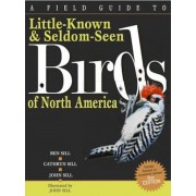 A Field Guide to Little-Known and Seldom-Seen Birds of North America, Paperback
