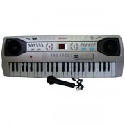 Orga electronica cu 49 clape si microfon inclus SD4902