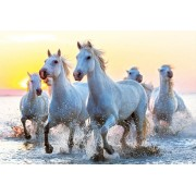 Puzzle Educa - White Horses at Sunset, 1000 piese, include lipici puzzle (17105)