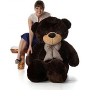 6 feet Chocolate teddy bear / Big very soft for pleasant Gift