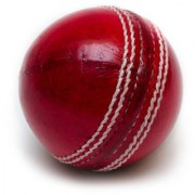Cricket Leather Ball (4 piece/part)