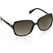 Farenheit Over-sized Sunglasses(Grey)
