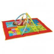 Centru De Joaca - Amicii Isteti 2 In 1 Taf Toys
