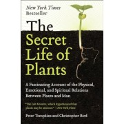The Secret Life of Plants, Paperback