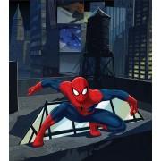 Fototapet FTDxl 1920 Spiderman eroul