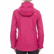 The North Face Evolution II Triclimate W