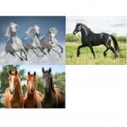 Geen 3x Dieren magneten 3D paarden
