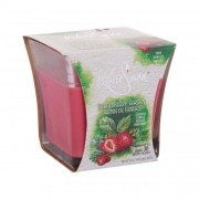 White Swan Strawberry Garden 283,5 g vonná sviečka unisex